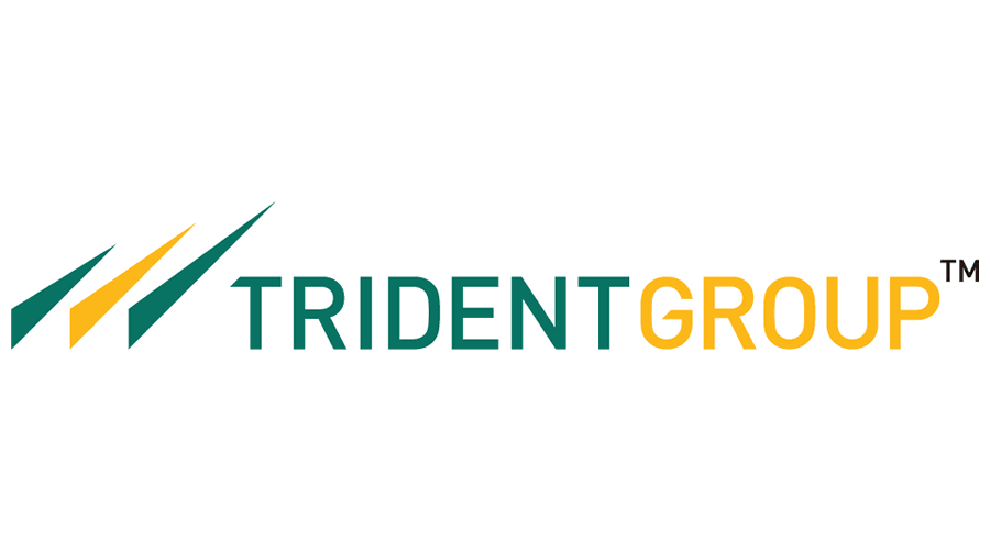 TRIDENT GROUP SEES NET PROFIT AT RS 112 CR