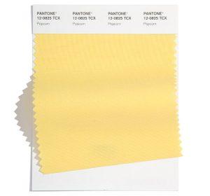 Pantone 12-0825 'Popcorn'